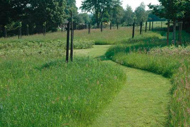 Prairie Jardins de la Balbrière